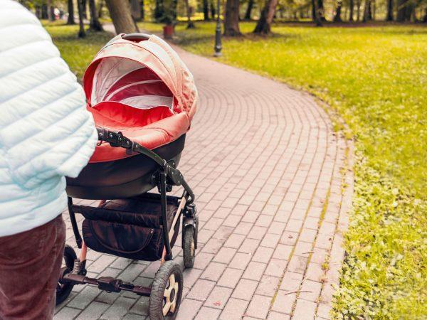 (Bildquelle: Stepashova/ 123rf.com)
