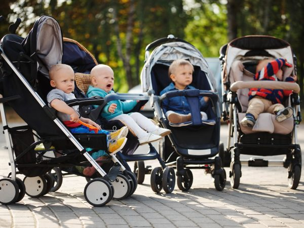 photo of funny children sitting in strollers in park